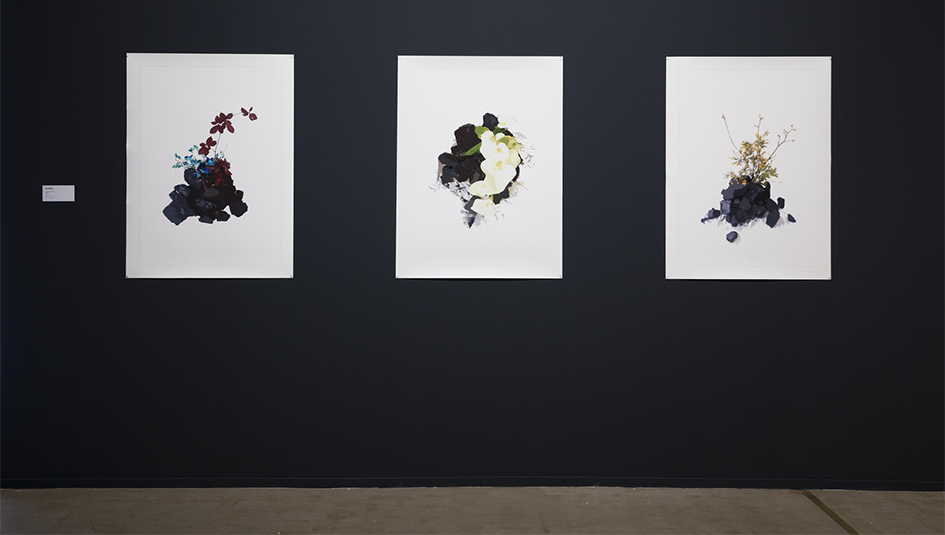 Ian Milliss, 'Notes on the Works', 2013, installation view, Artspace, Sydney