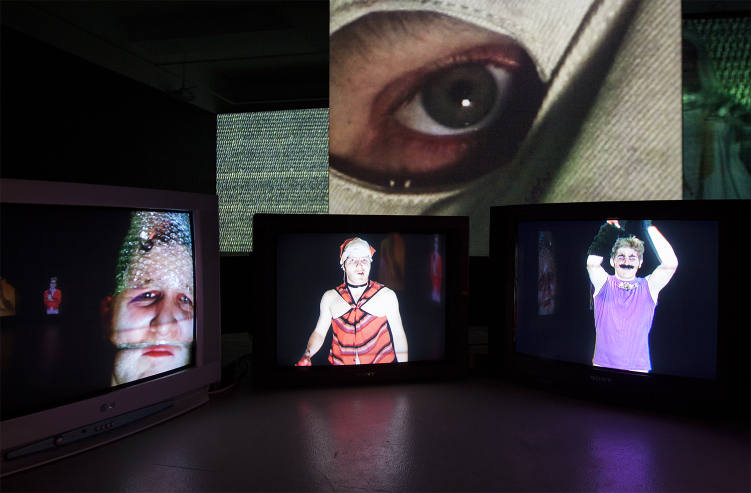 Heath Franco, ALTERLAND, 2015 (Installation view) Australian Experimental Arts Foundation, Adelaide, courtesy the artist