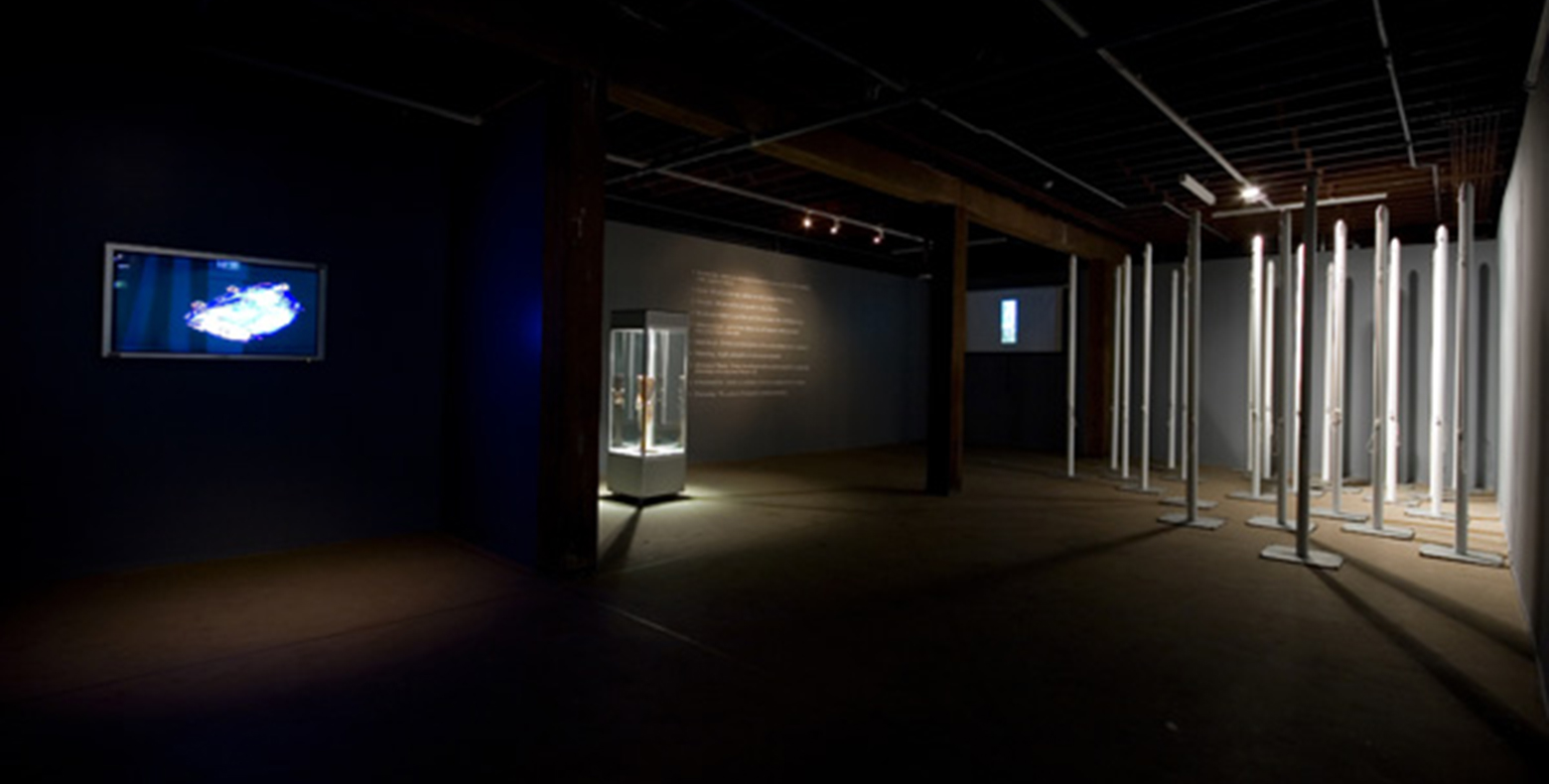 Michael Goldberg, 'Strong language Some violence Adult themes', installation view, Artspace, Sydney, 2008