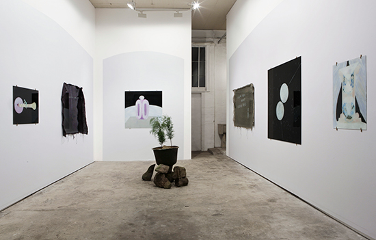 'Theoretical Regression: A Warm Sheen Against Received Ideas' (exhibition title), 2014, installation view at The Commercial Gallery, Sydney. Photo: Jessica Maurer