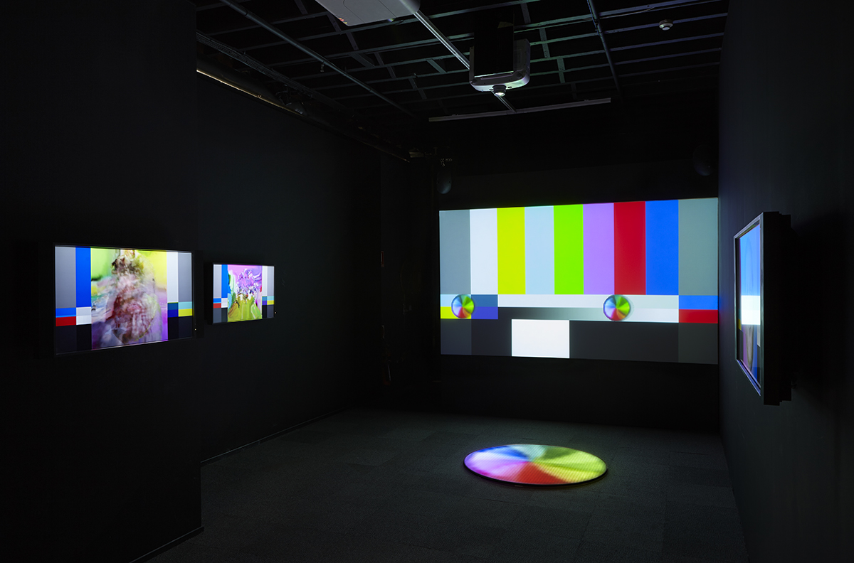 2015 NSW Visual Arts Fellowship (Emerging) Recipient, Heath Franco, 'THE RAINBOW LANDS', 2015, installation view, Artspace, Sydney. Photo: Zan Wimberley