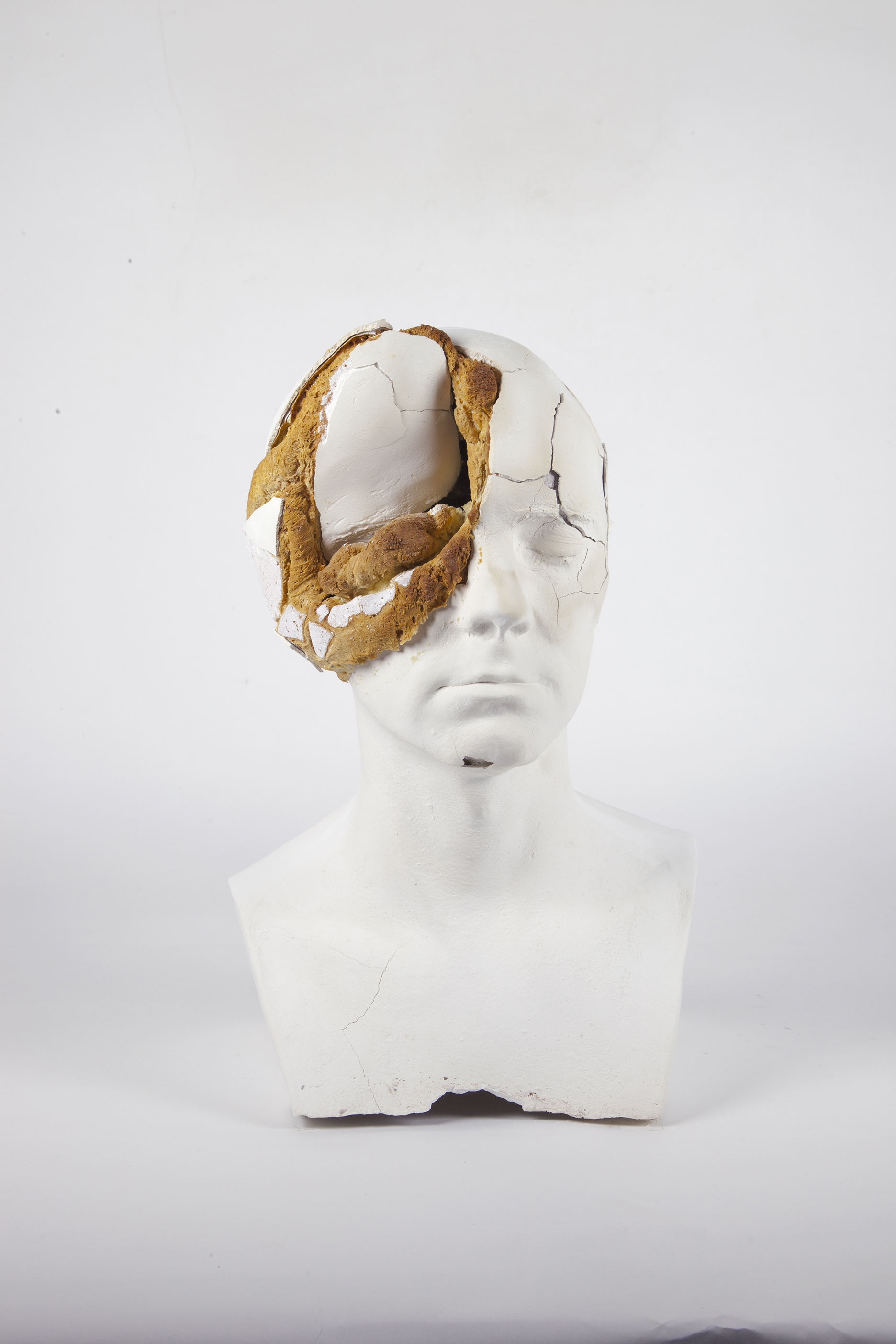 Tim Silver, 'Oneirophrenia', 2015, plaster and baked bread. Courtesy the artist and Sullivan + Strumpf.